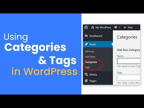 How To Correctly use Categories & Tags in WordPress